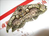 Papillon de nuit (10 cm de large): by angeours, Views[368]
