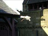 Cardiff Castle: by anijensen, Views[239]