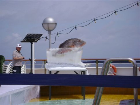 The fish ceremoniously licked by inductees into the equator-crossing club (ship's crew only, thank God)