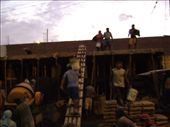 Peruvian concrete pump, pouring the second floor.: by anijensen, Views[158]