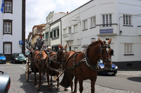 Horse drawn carriage...Azores