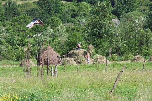 Family stacking hay, Romania.
