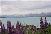 Lake Tekapo: by anijensen, Views[146]