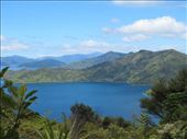 Ship's Cove at the mouth of Queen Charlotte Sound, New Zealand.: by anijensen, Views[120]