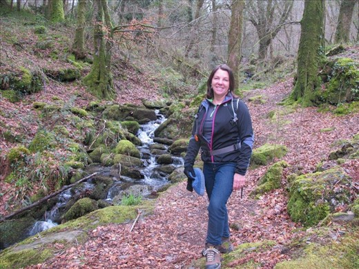 Walking in a gorgeous wood above Betws-Y-Coed, Wales