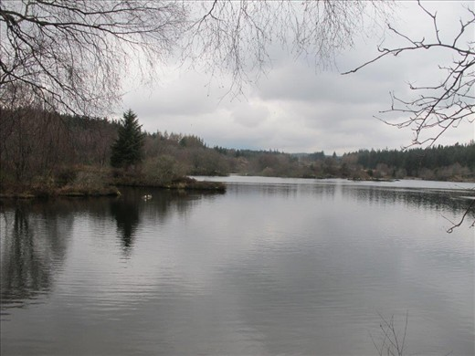 A small mountain lake, about 800 ft above Betws-Y-Coed, Snowdonia, Wales