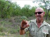 Frank Watts and chameleon friend: by anijensen, Views[168]