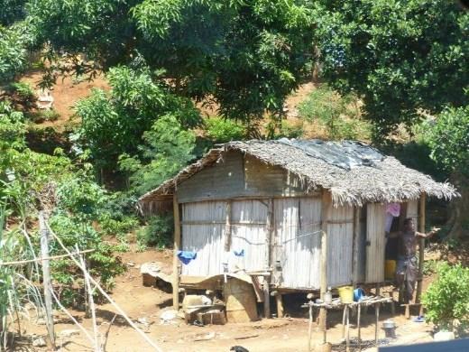 Life on Madagascar, fruit-laden mango and banana trees everywhere.