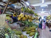 In the market, Kota Kinabalu, Malaysia: by anijensen, Views[186]