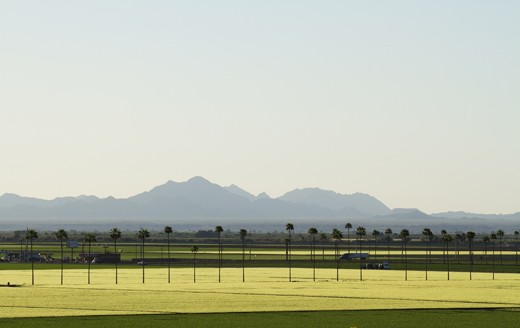Yuma farmlands, Arizona.