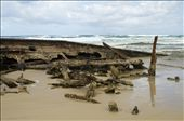 SS Maheno scattered on the beach: by annacalvert, Views[404]