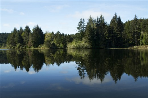 Oregon waterways with lovely reflections of a still lake in early Spring