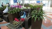 Airport in Bangkok Thailand. Pretty comfortable and surrounded by lovely orchids: by annakkham, Views[140]