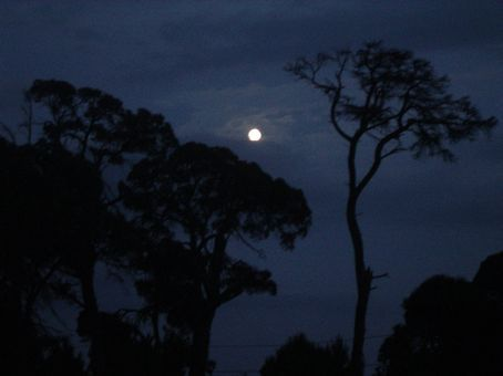 Interesting moon shot