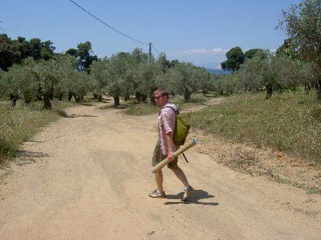 Path to the beach -- lots of olive trees everywhere