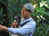 Finding some locals in the Monkey Forest, Amazon Basin.: by aptyson, Views[129]