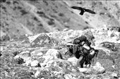 Sherpa carrying backpacks to the Everest Base Camp: by ariadnaba, Views[300]