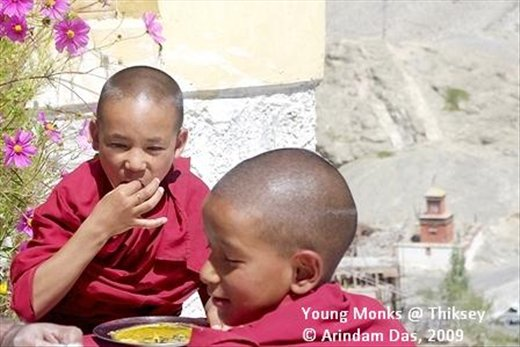 Young monks at Thiksey Gompa: Small things in life bring joy and cheer