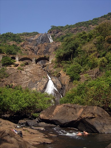 Goa is also rich in flaura and fauna. This snap is of DudhSagar Falls(literally Sea of Milk). Dudhsagar Falls (literally Sea of Milk ) is a tiered waterfall located on the Mandovi River, on Goa's border with Karnataka state. It is four-tiered. It is 60 km from Panaji city by road. We reached the bottom of the falls travelling through the Mahaveer National Park,Mollem,Goa.