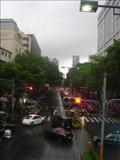 The tree lined streets_ of Harajuki: by atish, Views[216]