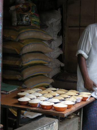 campioni di riso