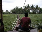 la vegetazione nel canale: by auaround, Views[281]