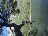 Tim diving into the Lake en route to a sore shoulder: by augustwilson, Views[243]