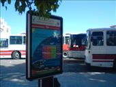 Bus terminal, Nabuel (I was waiting round, but was impressed by the bus frequency and efficiency of service): by aussiechick_007, Views[253]