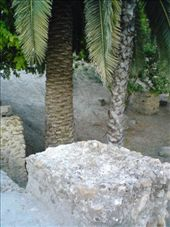 Tanit memorial area, Carthage: by aussiechick_007, Views[241]
