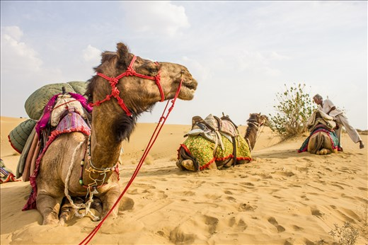 Three months in India forced me to seek solitude from the Thar Desert.