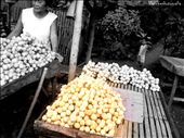 Lanzones- a tropical fruit in the Philippines.: by azwethinkweiz82, Views[610]