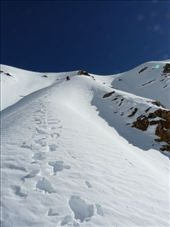 The steepest part of the acent: a 200m wall of ice and snow, starting with a nice crevasse.: by baba, Views[292]