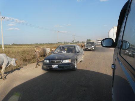 Trip from the border to Battambang.