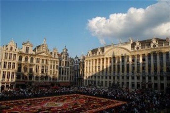 Flower carpet in the grand-place, brussels.