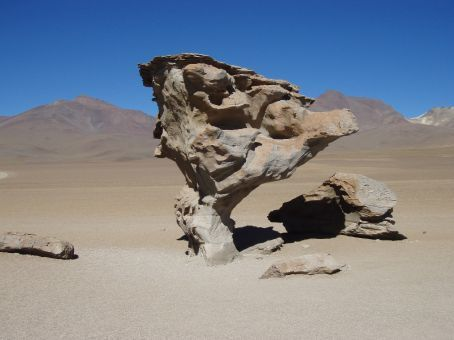 Stone tree.  Coowul!  A nest of these crazy rock formations just plump in the middle of the desert.