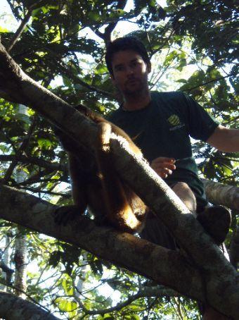 Pair of cheeky monkeys