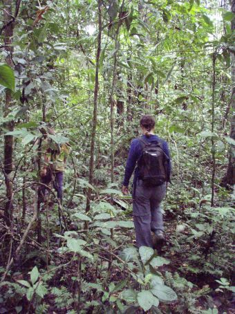 Ange walking through the Amazon basin jungle
