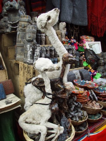 You can get all types of weird stuff in the witches market, including llama fetuses