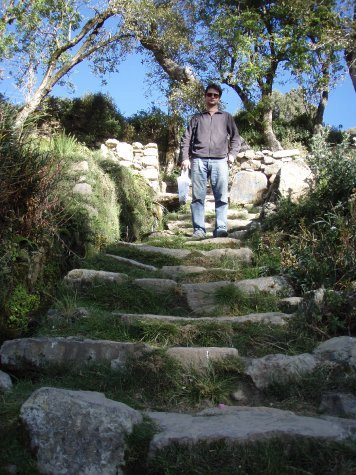 Stair case up from the landing point.  Follows alongside a natural spring.  Stairs still proving hard work at 3800m altitude.