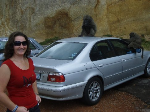 Ange getting about as close as she did to the baboons