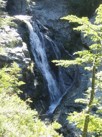 These falls were right near our campsite.