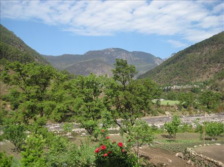 Uttarkashi was a dirty a dusty town to arrive in so we took off to the village of Netala where the Sivananda Kutir is, where I will be doing the Yoga course.  This is the view from our room.