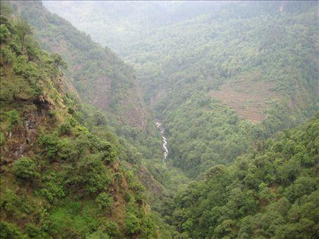 The lush Asi Ganga Valley