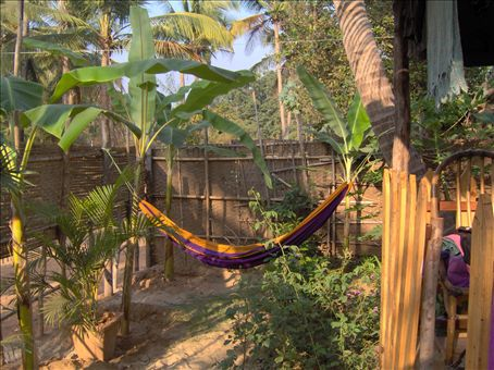 Our hammock space in the front garden.  Sunanda, our friend's sister, planted papaya, banana, chili, roses and some nice pink flowers.