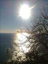 UNO SCORCIO DI SOLE ALLE CINQUETERRE-: by barbara-, Views[158]
