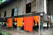 Orange robes dry outside the monk's dormitory. No washing machines or air conditioners here. The home built on stilts allows air to pass under the floorboards proving some relief from the oppressive heat. Siem Reap - Cambodia: by barendjr, Views[224]
