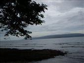 The beach: by bear, Views[313]