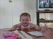Tayla getting very good at standing up: by bec-simon, Views[283]