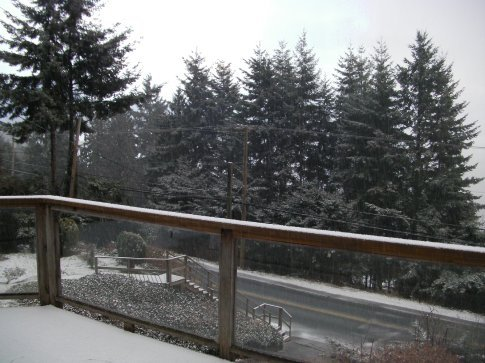 Snowing at our house in Gibsons!