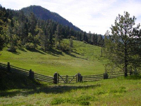 Green Colorado farm fields